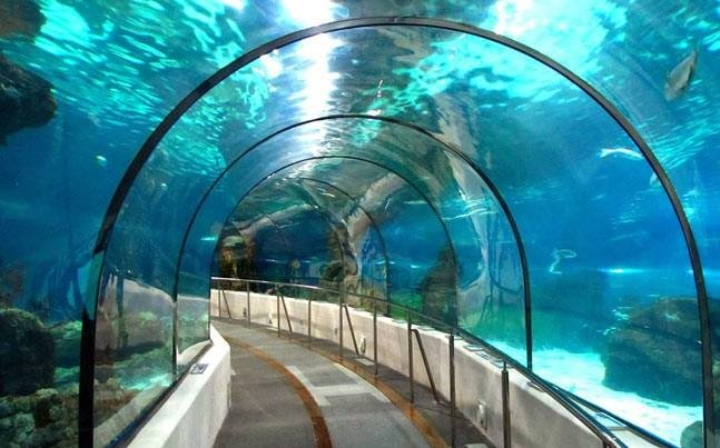 First Underwater Metro in India - Representational image